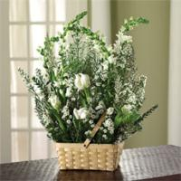 White Tulips, Snapdragons & Heather Basket by McAdams Floral, Victoria|Cuero|Goliad|Edna|Port Lavaca, Texas (TX)  Funeral Florist