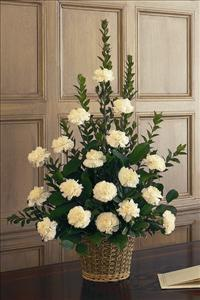 White Carnation Basket by McAdams Floral, Victoria|Cuero|Goliad|Edna|Port Lavaca, Texas (TX)  Funeral Florist