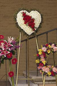 White Heart with Red Carnations by McAdams Floral, Victoria|Cuero|Goliad|Edna|Port Lavaca, Texas (TX)  Funeral Florist