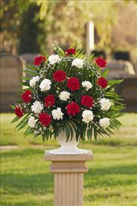 Red & White Carnation Basket by McAdams Floral, Victoria|Cuero|Goliad|Edna|Port Lavaca, Texas (TX)  Funeral Florist