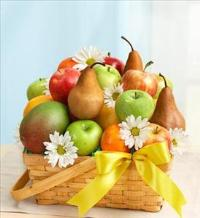 All Fruit Basket for Sympathy by McAdams Floral, Victoria|Cuero|Goliad|Edna|Port Lavaca, Texas (TX)  Funeral Florist
